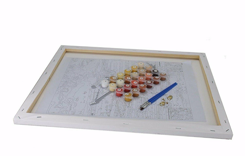 Malen nach Zahlen 40 x 50 cm mit Holzrahmen Komplettset  GX9017