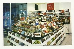 SAN-FRANCISCO-CA-Herman-039-s-Candy-Shop-Vintage-Postcard