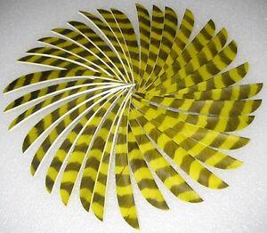 9-PARABOL-3-034-Barre-jaune-fleche-Plume-de-Turquie-embouti-pfeilbau-Bogenschiesen
