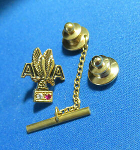 AMERICAN AIRLINES EMPLOYEE SERVICE Award PIN  DIAMOND RUBY