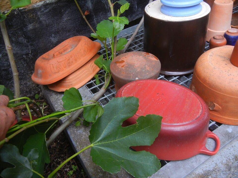 Krukker, plantekrukker, urtepotte m.m.