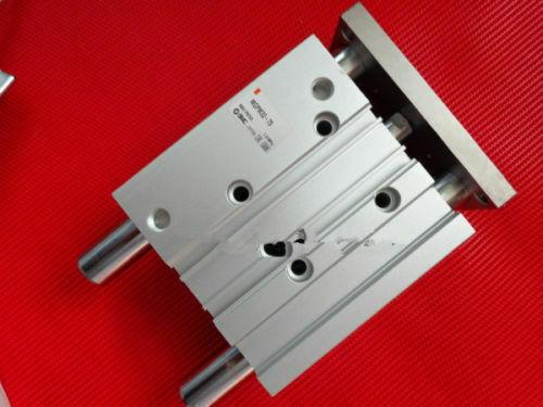 NEW SMC MGPL40-100 #WS03 /&R1