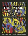 The Juvenile Justice System: Delinquency, Processing, and the Law by Peter J. Benekos, Alida V. Merlo, Dean J. Champion (Paperback, 2014)