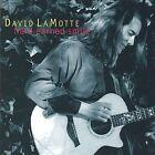Hard Earned Smile by David LaMotte (CD, Nov-2001, Lower Dryad Music)