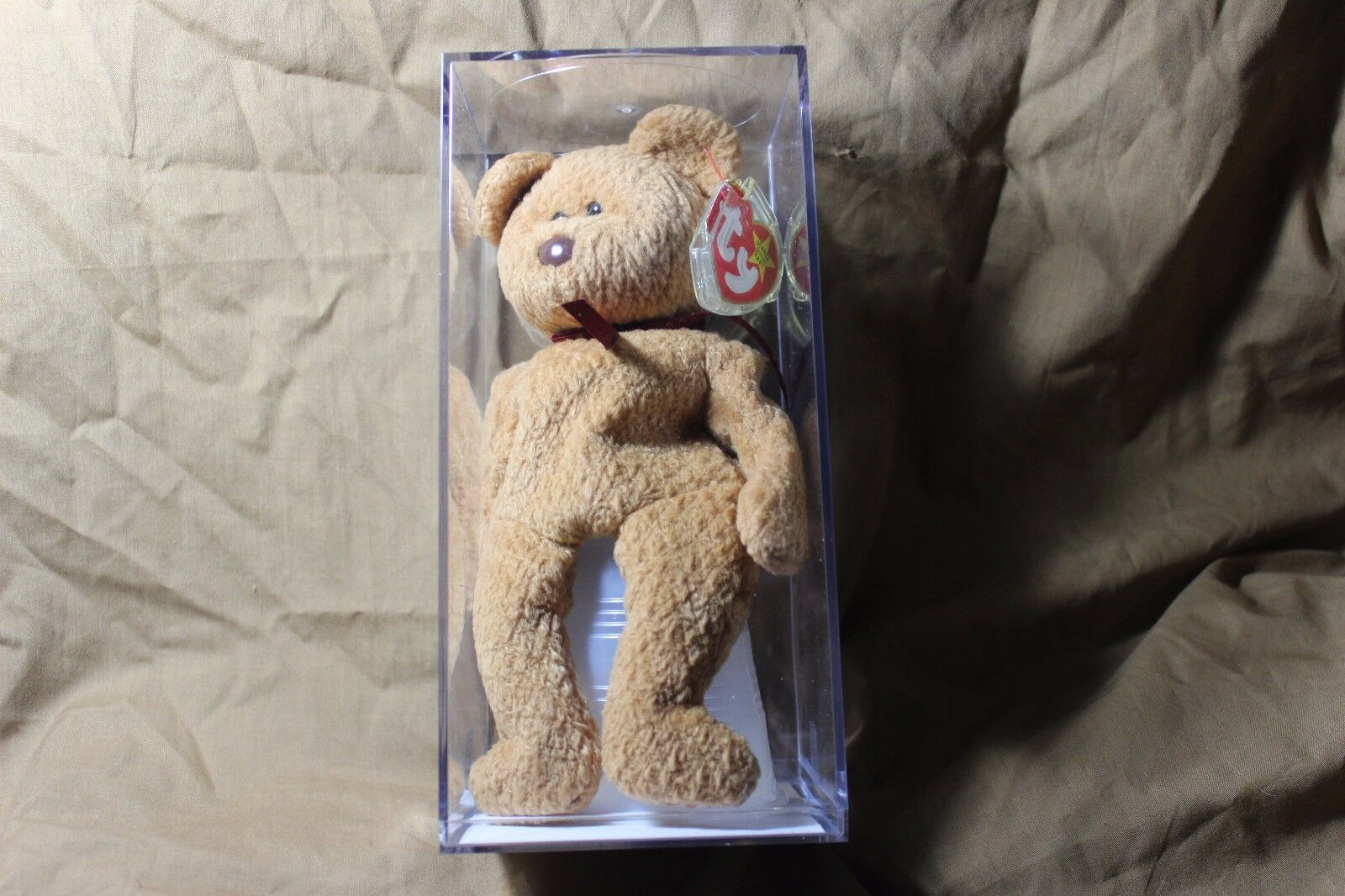 Authenticated TY Beanie Babies Curly Bear. All Errors Plus Sewing Error.  MWMT