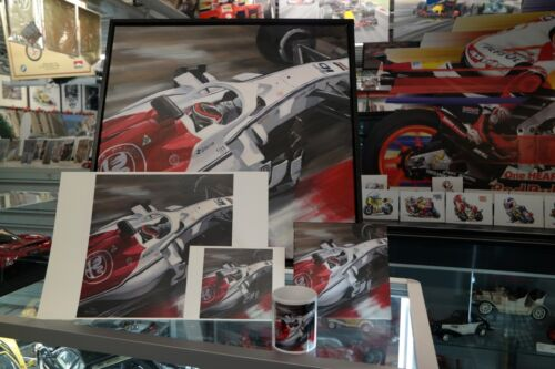 "Toon Nagtegaal OE Canvas 2018 Alfa Romeo Sauber C37 Charles Leclerc /""Close up/"""