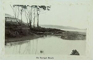 TERRIGAL-BEACH-NEW-SOUTH-WALES-RARE-EARLY-1900-S-POSTCARD