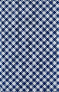 Image Is Loading Blue Gingham Check Vinyl Tablecloth Summer Fun Outdoor