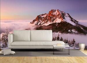 Neige-Mountain-Peak-Papier-Peint-Photo-Mural-144x100inch-Gratuit-Adhesif