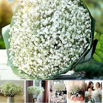 Artificial Plastic Gypsophila Baby's Breath Flower Plant Home Wedding Decor