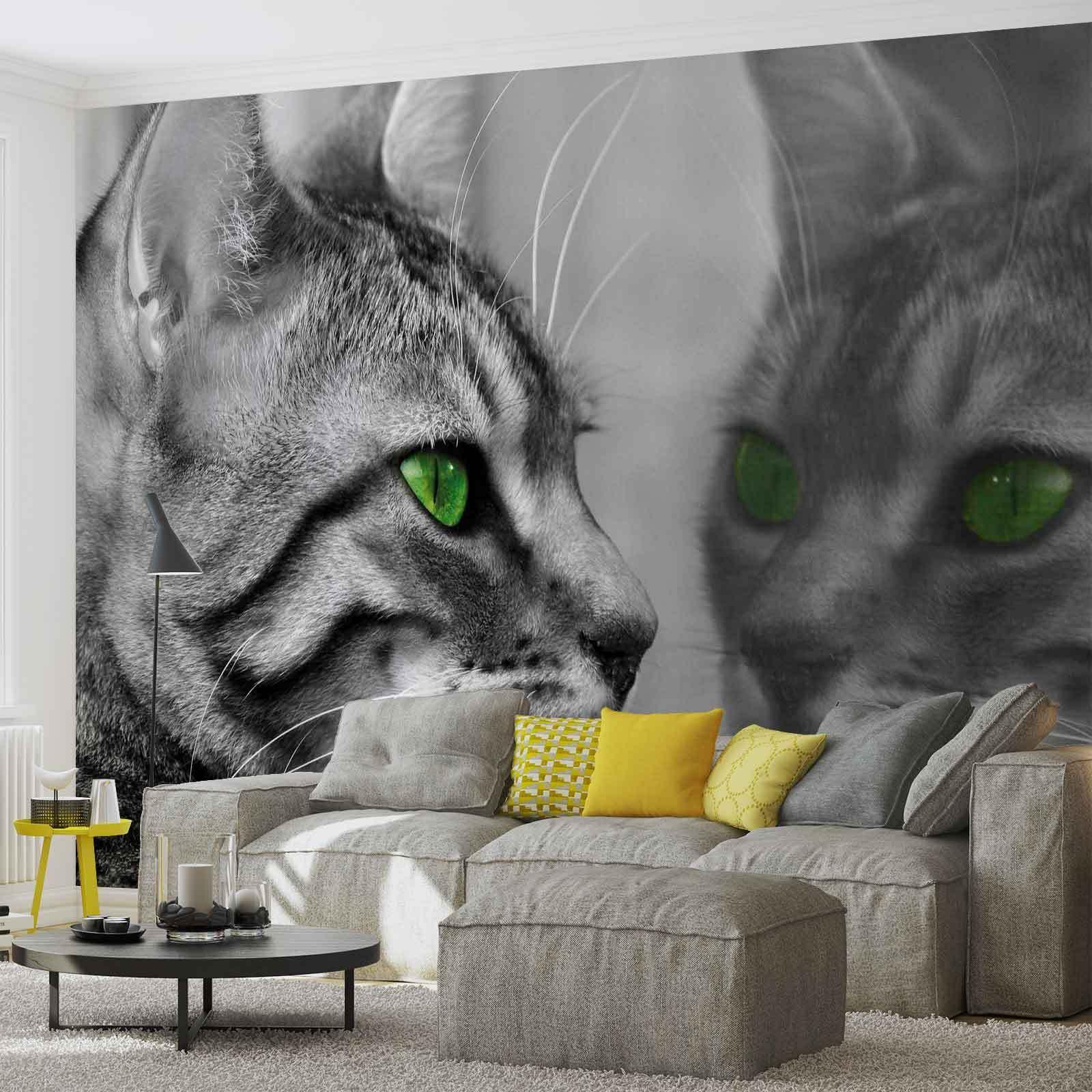 Tapete Vlies Fototapete Natur Tierwelt Tiere Hauskatze Katze mit grünen Augen