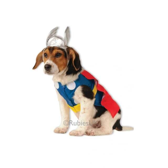 Dog Puppy Superhero Fancy Dress Costume
