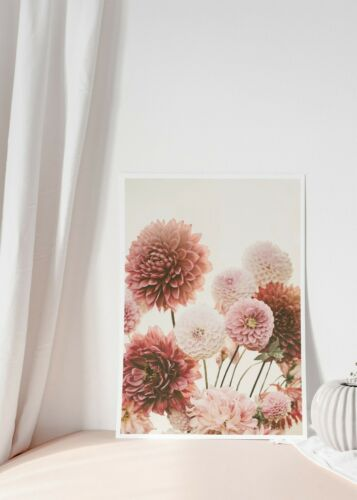 A3 A2 A1 Size Pink Dahli Flowers Blossom Wall Art Print Perfect Home Decor