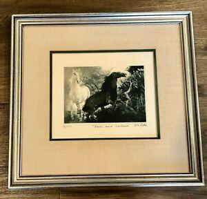 G-H-Rothe-Grace-amp-Stallion-Mezzotint-signed-Beautifully-Framed