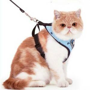 Pet-Cat-Vest-Harness-Leashes-Suit-Navy-Blue-Harness-Pet-Cat-Puppy-Popular-SALE