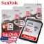 SanDisk-16GB-32GB-64GB-Ultra-Class-10-UHS-I-SD-80MBs-SGHC-SDXC-memory-card thumbnail 1