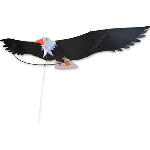 Kite-Seven-Foot-Large-Eagle-Kite-15-PR-44771