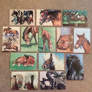 13 Horse Art Postcards Janet Griffin-Scott Jumping Eventing Friesian Pony Foal