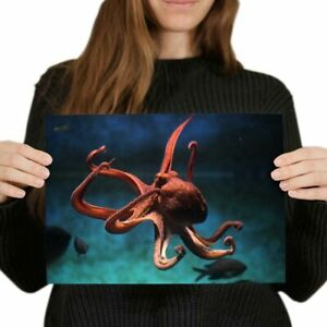 A4-Submarino-Cool-Pulpo-Oceano-Mar-cartel-29-7X21cm280gsm-8329