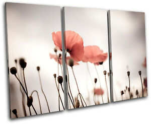Poppy Field Flowers Floral TREBLE CANVAS WALL ART Picture Print VA