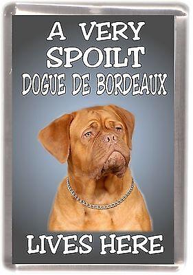 """Dogue de Bordeaux Dog Fridge Magnet """"A VERY SPOILT .... LIVES HERE"""" by Starprint"""
