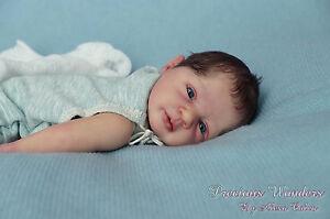 Precious-Wonders-Newborn-Baby-boy-PROTOTYPE-Felix-by-Linde-Scherer-IIORA-member