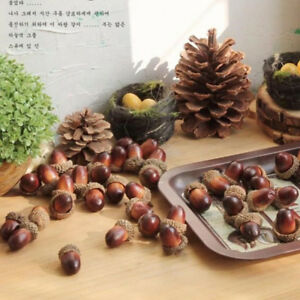 5x Natural Acorns With Caps Thanksgiving Crafts Fall Decor DIY Handmade Material