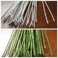 Florist Stub Stem Floral Wires Green / White #14/16/18/20/22/24/26/28/30 GAUGE