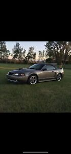 2002 Ford Mustang GT GT
