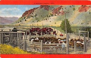 A-WESTERN-CORRAL-WITH-HORSES-POSTCARD-c1950s