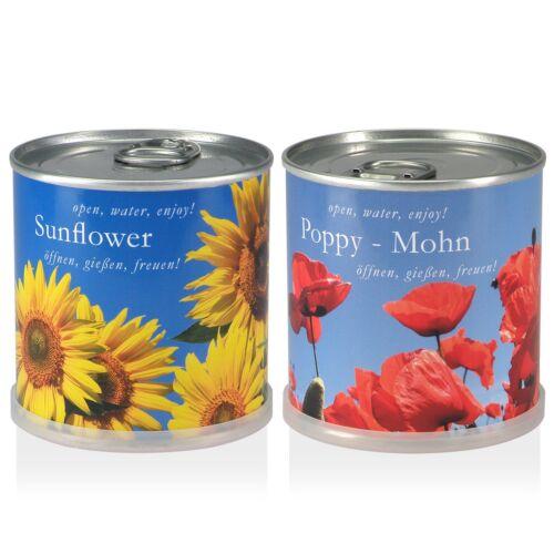 Sonnenblume Mohn Blumen in der Dose Geschenk Set von Macflowers