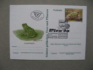 AUSTRIA, privat ill. PC FDC CTO 1990 reptile frog