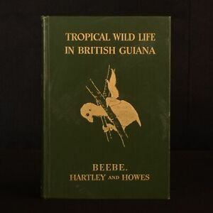 1917-Tropical-Wild-Life-William-Beebe-Theodore-Roosevelt-Illustrated-1st-Edition
