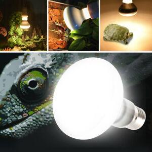 E27-220V-25-50-75-100W-Reptile-Basking-Light-Lamp-Heater-UVB-UVA-Halogen-Bulb