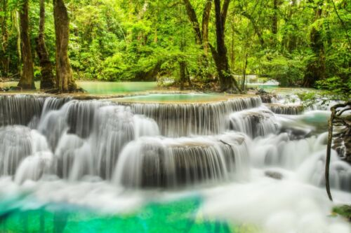 Forest Blue Waterfall Stream trees Landscape Art Large Poster /& Canvas Pictures