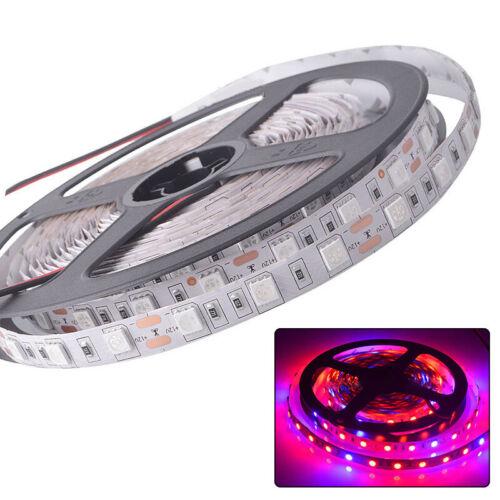 5050 300led LED Grow Light Strip Pflanzenlampe Streifen DC12V DC24V Licht