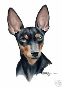 MINIATURE PINSCHER Dog 8 x 10 ART Print Signed by Artist DJR
