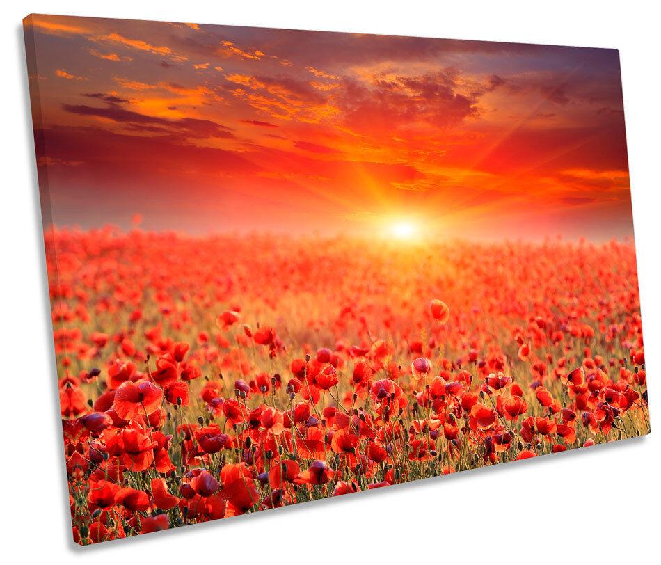 Sunset Poppy Field Landscape SINGLE CANVAS WALL ART ART ART Print Picture e5050c