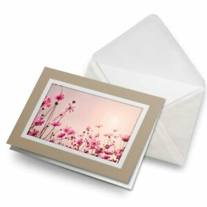 Greetings-Card-Biege-Awesome-Pink-Cosmos-Flower-16633