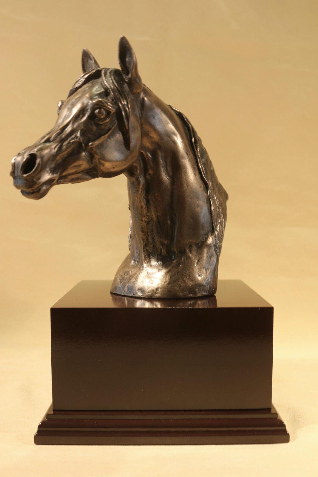 Arab Head - Bronze Trophy - Harriet Glen - Mahogany Plinth