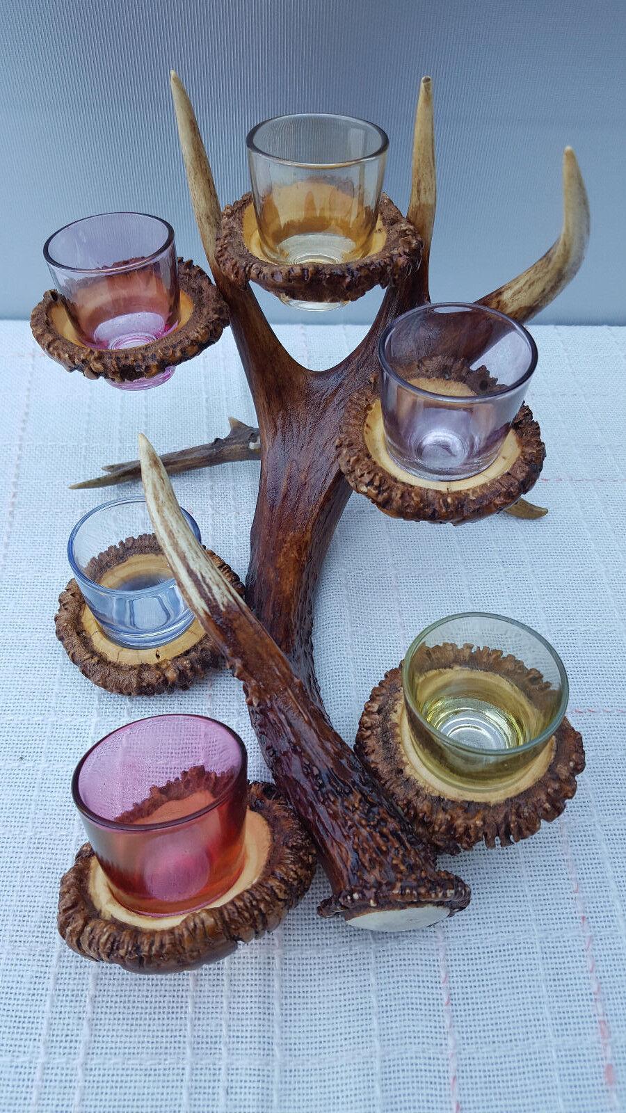 6 Alcool Verres MultiCouleures cerf bois Alcool Verres Monture véritable Hirschhorn