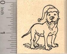 Hamster in Christmas Cracker Rubber Stamp J15002 WM