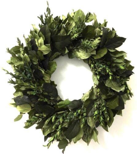 "VanCortlandt Farms Natural Serenity Green Wreath   22"""