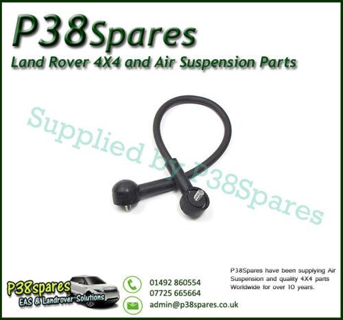 RANGE Rover P38 2.5 BMW Diesel inferiore Boot PORTELLONE Cavo Retaining Strap 94-02