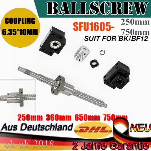 SFU1605-L250//360//650//750mm Ball Screw Kugelumlaufspindel+BF12//BK12 Standard CNC