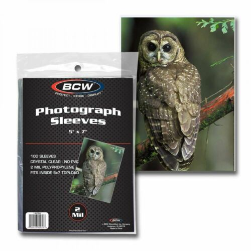 500 BCW 5x7 Photo Soft Poly Sleeves Acid Free Print Holder Archival