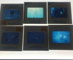 Lot-of-36-Vintage-Scuba-Diving-1970-s-Color-Slides