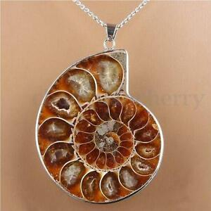 Hot-Madagascar-Sea-Natural-Druzy-Ammonite-Slice-Shell-Gemstone-Pendant-Necklace