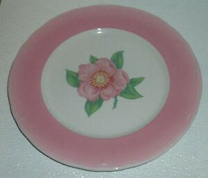 Shenango-Dinner-Plate-Wild-Rose-Pink-Band-Restaurant-Diner-Ware-Vtg-10-5-034