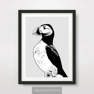 Détails Sur Macareux Art Imprimé Poster Animaux Noir Blanc Oiseaux Dessin Decor Illustration Afficher Le Titre Dorigine